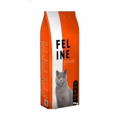 Pienso para gatos y gatitos...