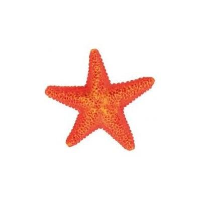Estrella de mar 9cm para...